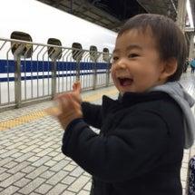 そうだ、京都へ行こう…