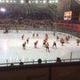 氷上の格闘技