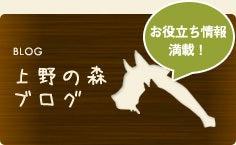 上野の森どうぶつ病院ブログ