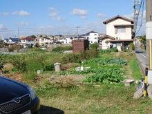 6アールの畑。 草との競争