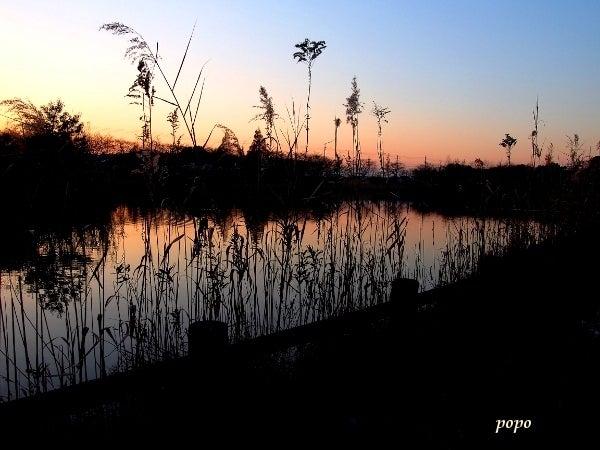 空と池のグラデーション01