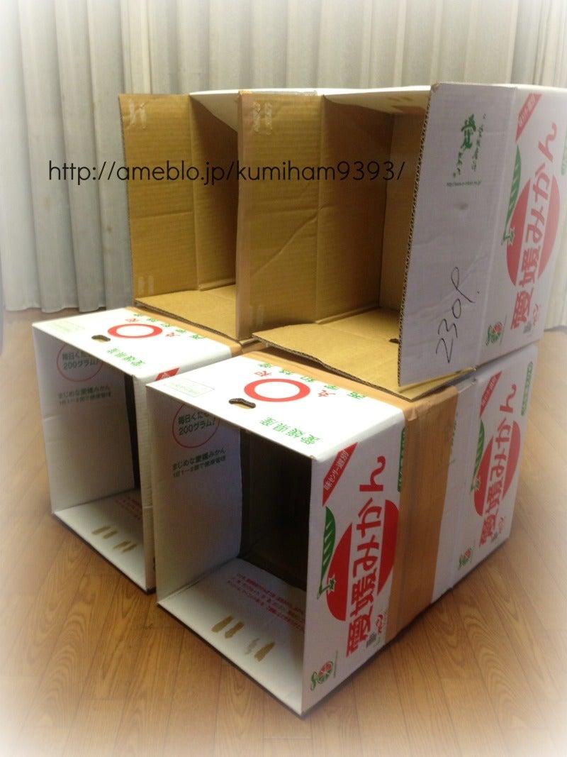 みかん箱5