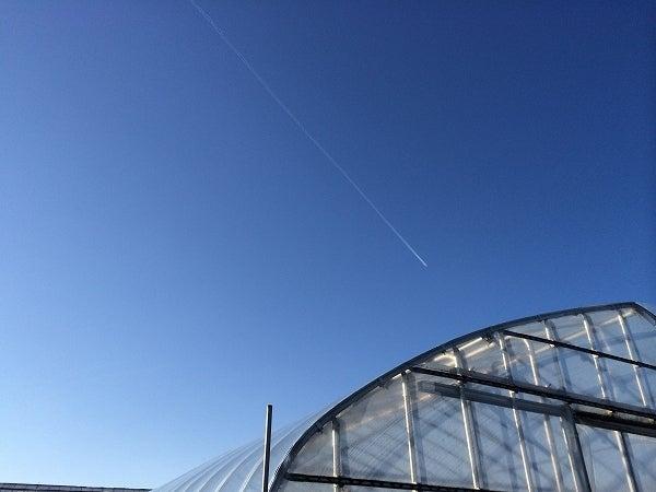 冬の青空2