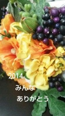 IMG_20141231_225248.jpg