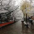 京都の足つぼ 祇園あ…
