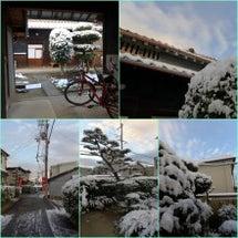 今年は、雪のお正月で…