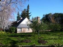 Steve Jobsの家とリンゴの木