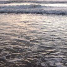 インドの海