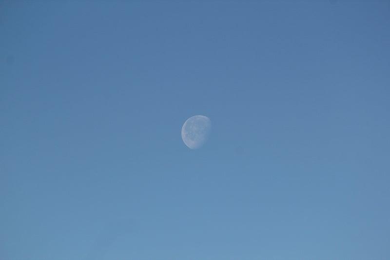 朝の月の写真