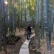 鎌倉へ初詣に行ってき…
