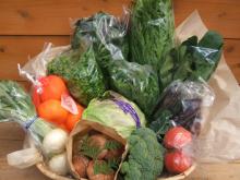 風の湯 四季菜市場野菜セット