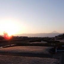 早朝ジョグの風景