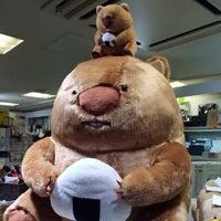 坂口勇人(さかぐちはやと)