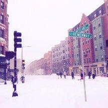 ボストンは真っ白なぅ