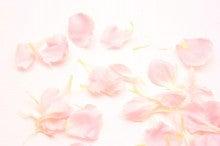 150130お花