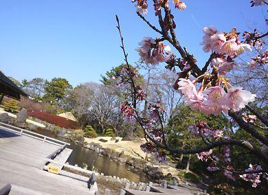 駿府城紅葉山庭園-7