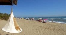 Cacoon 海岸沿い