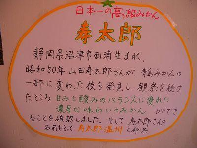 寿太郎の歴史:沼津市西浦生まれ