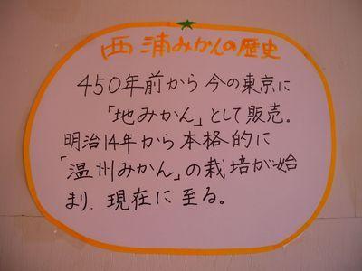 西浦みかんの歴史:450年前から東京に販売