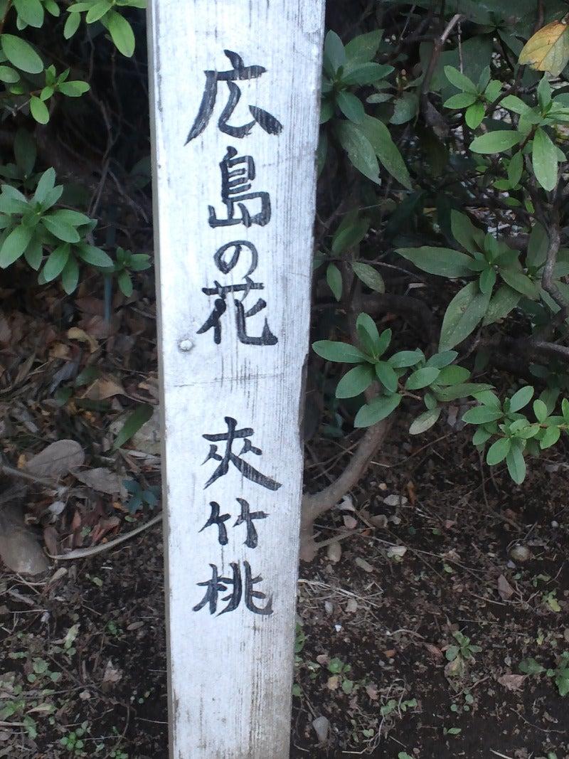 広島とある