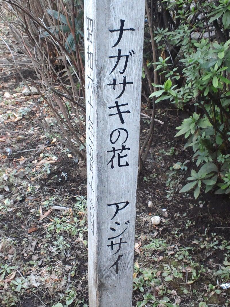 長崎とある