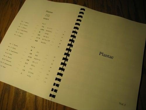 Plantae - I, 03