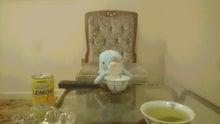 煎茶はいかが?