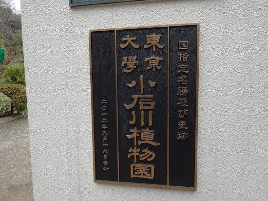 koishikawa10