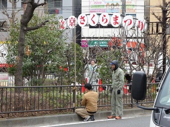 koishikawa6