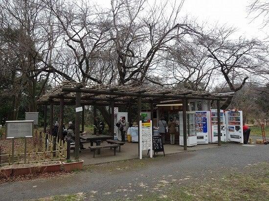 koishikawa22