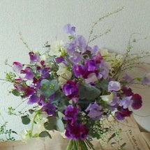 ●花材グリーンの栽培