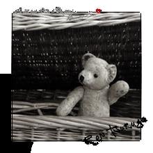 mimi's world * FOREVER Bear Ren