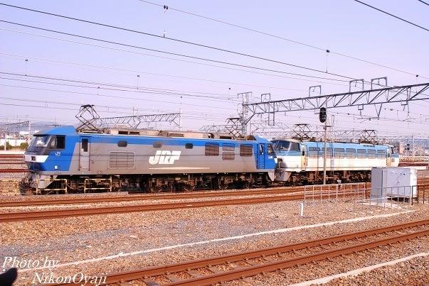 kousyu-02S