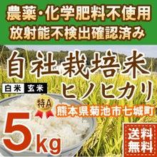ヒノヒカリ5kg