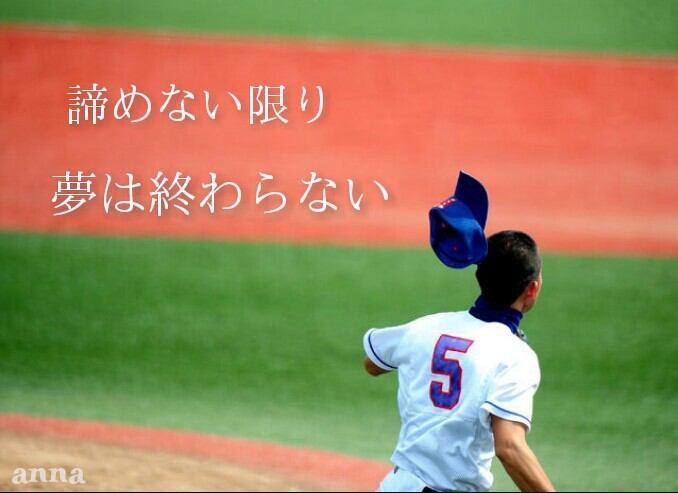 私は高校野球、大好きです。