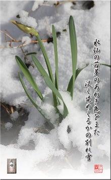 フォト短歌「別れ雪」
