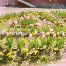 SpringFlow…