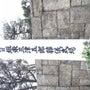 坂東三津五郎さんの本…