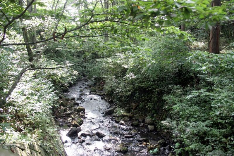 駒形城/②神社の前の川
