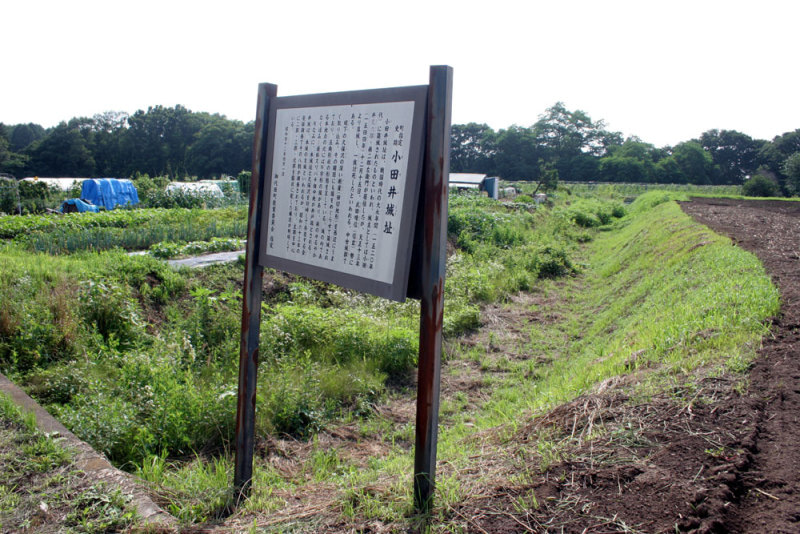 小田井城/②説明板