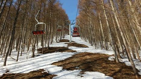 超格安の、雪がなかったらごめんなさい春スキー3
