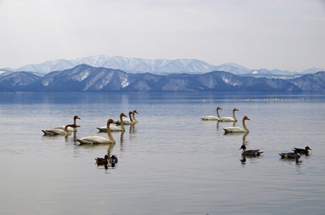 猪苗代湖の志田浜が再開発で閉鎖に!4