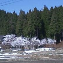 冬季スキーシーズンも…