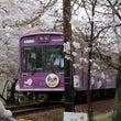嵐電 桜のトンネル②