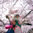 桜〜♪満開の代々木公…