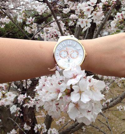 2015年テンデンス(tendence)と桜