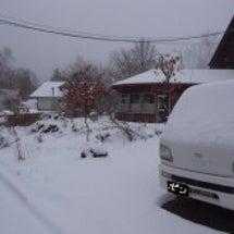 ああああ! 雪!!!…