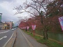 弘前公園20150415