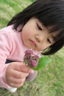 花とまどか