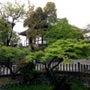 新緑の京都■お墓参り…